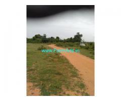 2.5 acres agricultural farm for sale at Gowribidanur Hunusenahalli