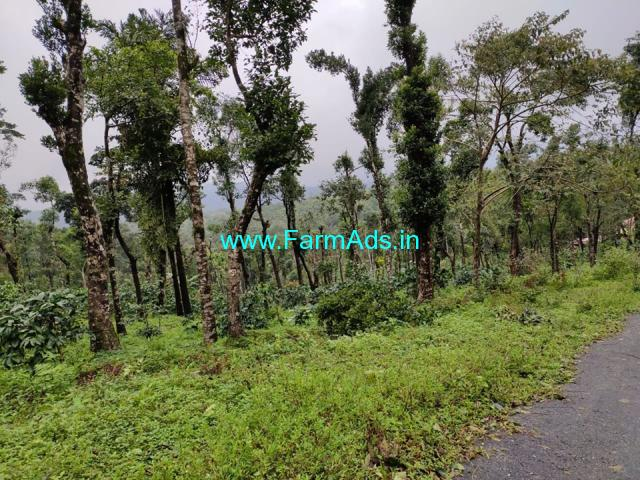 5 Acre coffee and farm Land For sale in mudigere, Chikmagalore