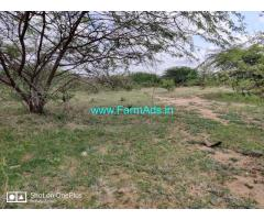 100 Acres Farm land property for sale at Hovinahole, Hiriyur Taluk,