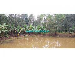 6.5 Acres Agriculture Land for sale at Shanivarsanthe, Sakleshpura.