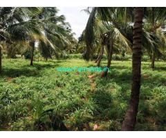 15.8 acre farm Garden for sale at Sundarapandiapuram near Tenkasi.