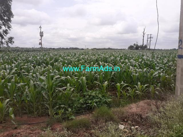 Main road attached 1 acre Agriculture Land for sale @ Maralenahalli