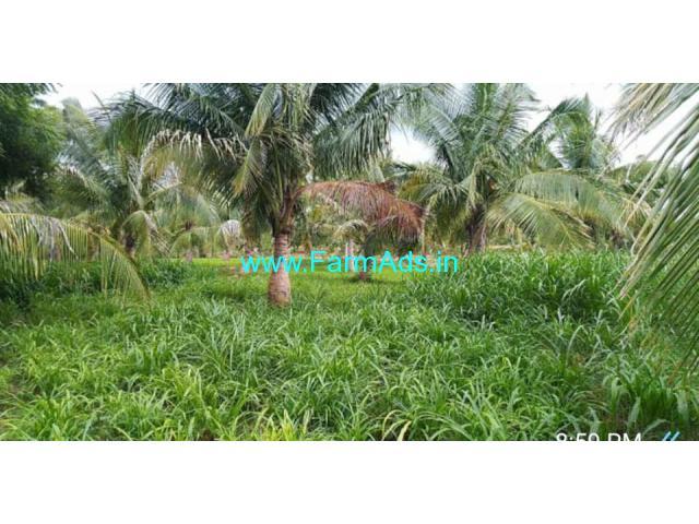 8 acres coconut farm land for sale near dindigul 20km