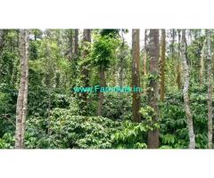 25 Acres Coffee Land for Sale at Virajpet