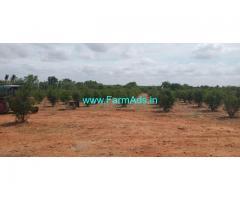 8.13 Acres Agriculture Land for Sale near Hiriyur