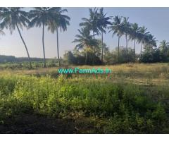 50 Cents Farm Land for Sale Near Walajabad to Kanchipuram mail road