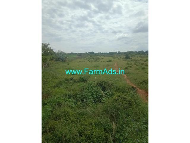 5.5 Acre Farm Land for Sale Near Gauribidanur