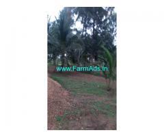 3 Acre Farm Land for Sale Near Mandya