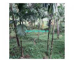 10 Acre Farm Land for Sale Near Belthangady