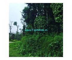 3.5 Acre Coffee Land for Sale Near Sakleshpur