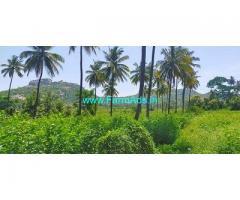 11.25 Acre Farm Land for Sale Near Ramanagara