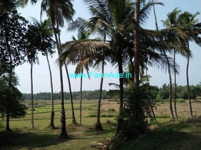 5.81 Acre Farm Land for Sale Near Karkala