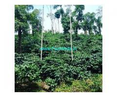 12 Acre Coffee Land for Sale Near Sakleshpur