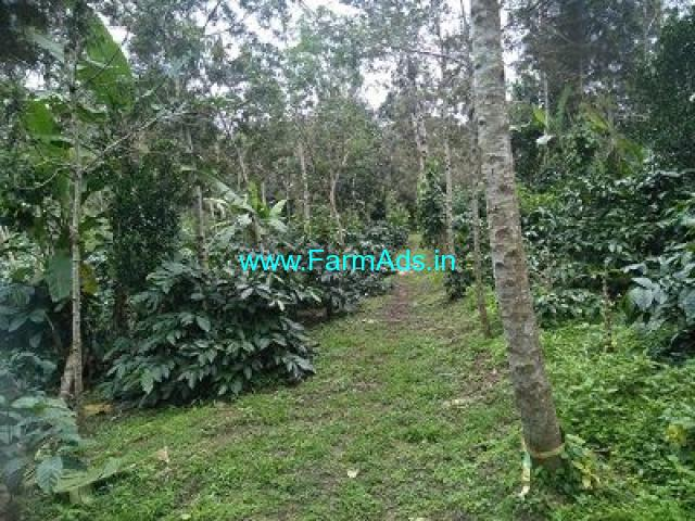 10 Acre Farm Land for Sale Near Belur