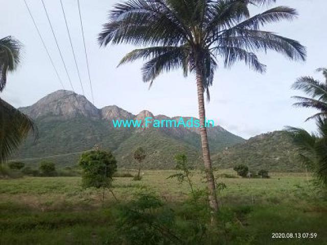 2 Acre Farm Land for Sale Near Udumalpet