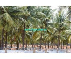 5.5 Acre Farm Land for Sale Near Udumalpet