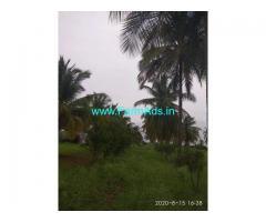 8.5 Acre Farm Land for Sale Near Sira