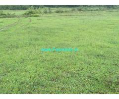 2 Acre Farm Land for Sale Near Chikmagalur