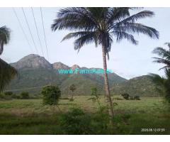 3 Acre Farm Land for Sale Near Udumalpet