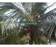 3 Acre Farm Land for Sale Near Thirumoorthy