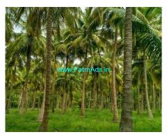 2 Acre Farm Land for Sale Near Belthangady