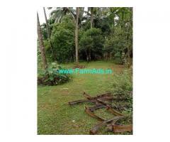 113 Cents Farm Land for Sale Near Bantwal