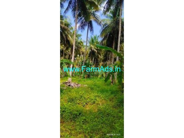 22 Acre Farm Land for Sale Near Dindigul