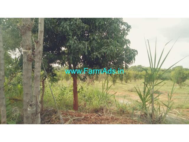 8.13 Acre Farm Land for Sale Near Hiriyur