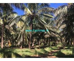3.75 Acre Farm Land for Sale Near Senjerimalai