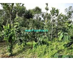 3.10 Acre Farm Land for Sale Near Mananthavady