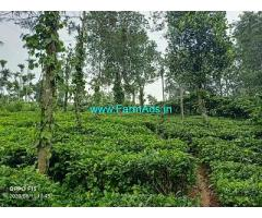 2.35 Acre Farm Land for Sale Near Meppadi
