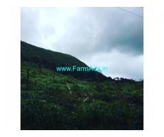8 Acre Farm Land for Sale Near Chikmagalur