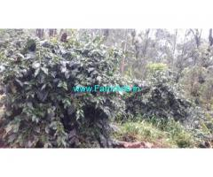 24 Gunta Coffee Land for Sale Near Chikmagalur