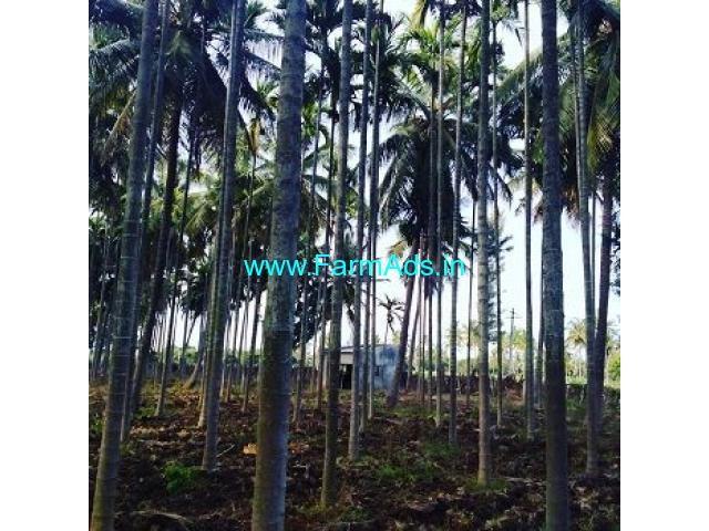 5.5 Acre Coffee Land for Sale Near Chikmagalur