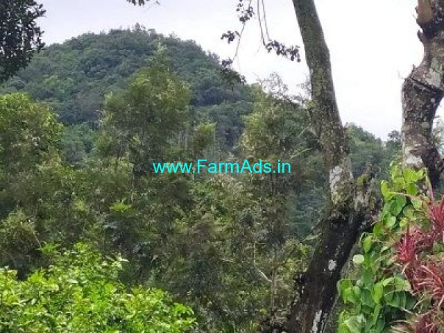 10 Acre Coffee Land for Sale Near Mudigere