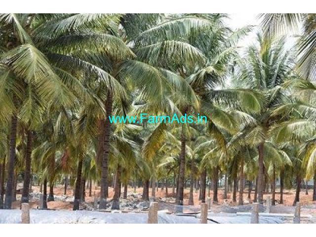 3 Acres of Land for Sale at Udumalpet