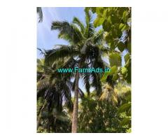 35 Cent Farm Land for Sale Near Thazhakudy