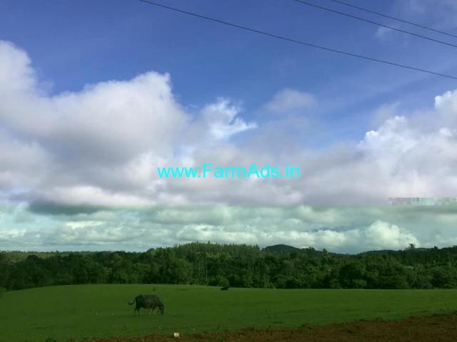 4 Acre Farm Land for Sale Near Sakleshpur