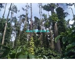 4 Acre Land for Sale Near Chikmagalur