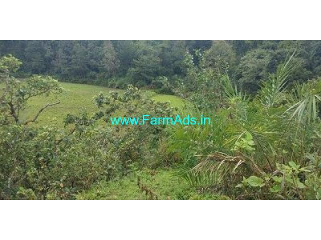 5 Acre Farm Land for Sale Near Mudigere