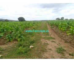 50 Acre Farm Land for Sale Near Hullahalli