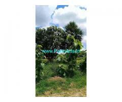 10 Acre Farm Land for Sale Near Gunambadi