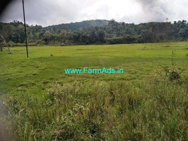 1.5 Acre Farm Land for Sale Near Mudigere