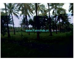 5 Acre Farm Land for Sale Near Gubbi