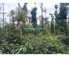 4 Acre Farm Land for Sale Near Mudigere