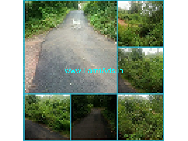 90 Cents Agriculture land for Sale in Udupi
