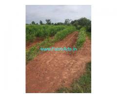 1.35 Acre Farm Land for Sale Near Alair