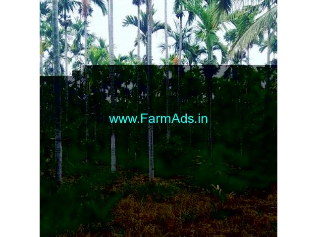 11 Acre Farm Land for Sale Near Chikmagalur