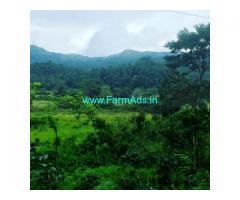 4.5 Acre Farm Land for Sale Near Mudigere