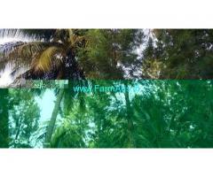 20 Acre Land for Sale Near Malavalli